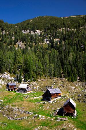 Shepherds huts at Planina Dedno Polje Mountain Pasture