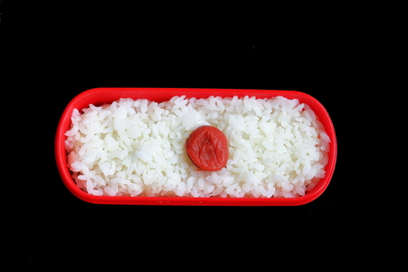 thrifty: Hinomaru bento. Lunch box. Pickled plum and rice.
