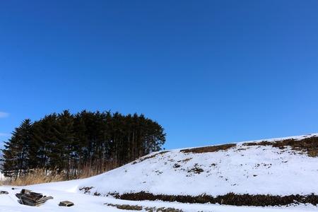 haiku: Patches of snow