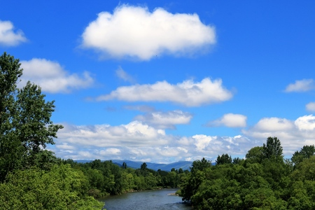 float cloud: Clouds and the river and the forest. Summer landscape.
