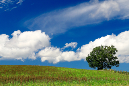 oka: Hill and cloud of summer. Stock Photo