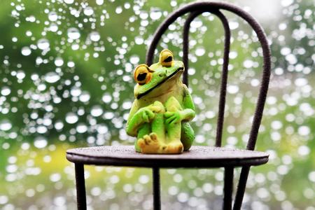 雨とカエルと椅子