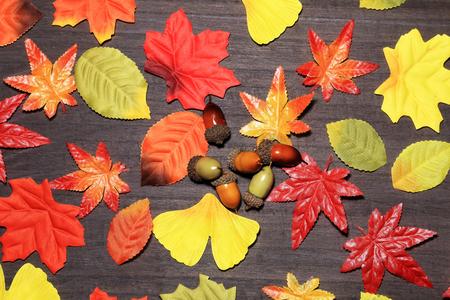 Autumn leaves Banco de Imagens - 86495373