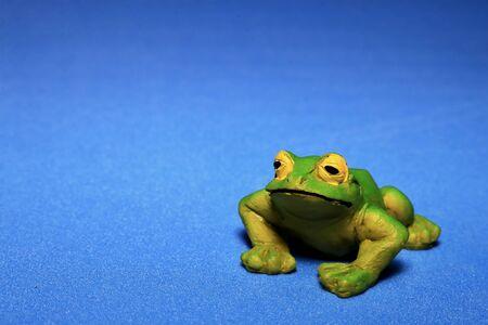 Summer frog on blue 스톡 콘텐츠