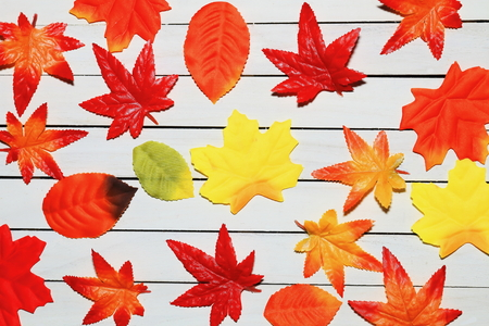 Autumn leaves of counterfeit fell to the floor