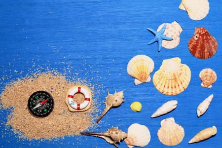 Compass and shell