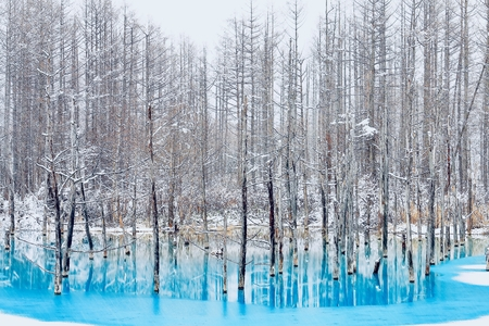 Early winter of blue pond
