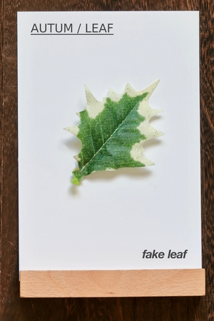 leaf.fake leaf. AUTUM / LEAF 写真素材 - 116548707