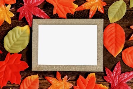 Photo stand and fallen leaves Фото со стока