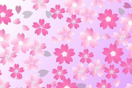 Cherry blossom petals Imagens