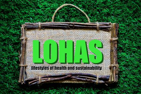 LOHAS : lifestyles of health and sustainability