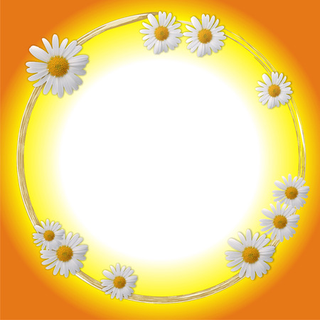 Oval framework decorated by white flowers photo