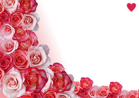 arrangement: Abstract border, flowers, white and rose background