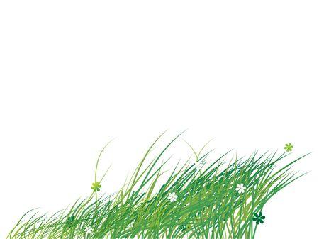 Grass silhouette green, summer background photo