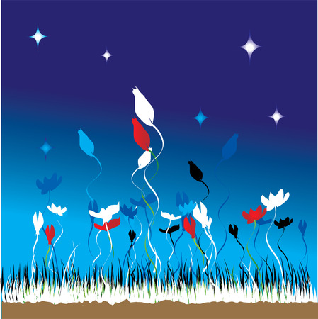Grass and flowers on a background of the night sky Stock Vector - 2531227