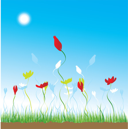 Grass and flowers on a background of the sky Vector