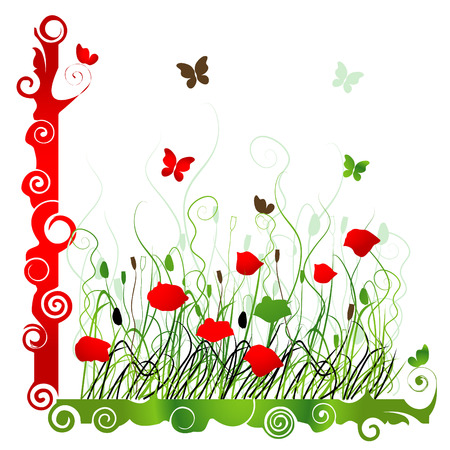 Background with green grass ang red poppie isolated on white Vector