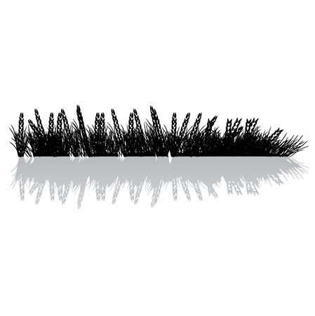 Grass silhouette black, wheat Stock Vector - 2558676