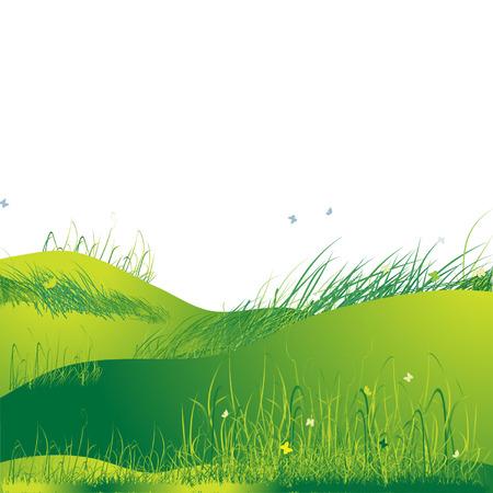 Meadow green, summer, grass and butterflies Stock Vector - 2606419