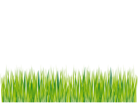 Grass silhouette green, summer background Vector