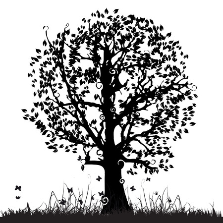 Tree silhouette old, grass, summer Vector