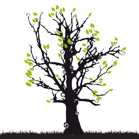 Tree silhouette old, grass, summer Stock Vector - 2773602