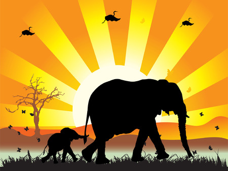 morning walk:  of elephants on nature walk, vector illustration