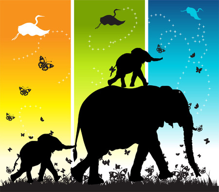 of elephants on nature walk, vector illustration