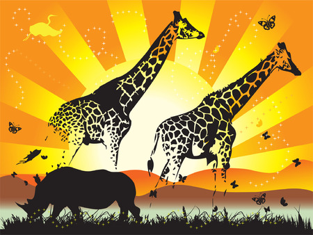 of giraffe on nature walk Vector