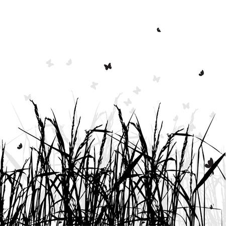 Grass silhouette black, background Vector