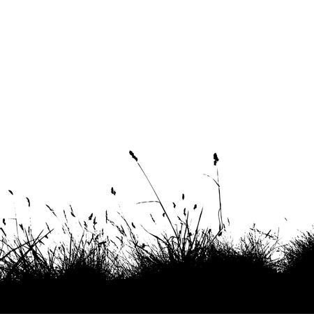 horizon over land: Grass silhouette black