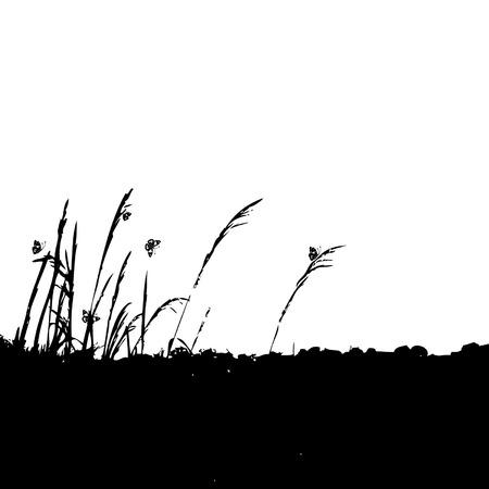 Grass silhouette black Stock Vector - 3234572