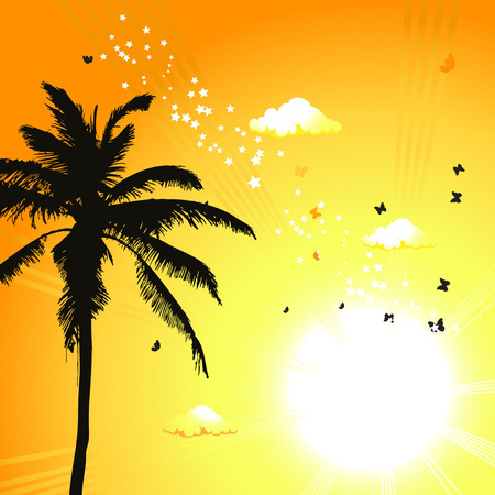 cartoon palm tree: Tropical sunset, palm trees