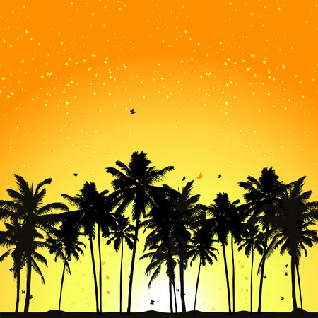 Tropical sunset, palm trees Vector