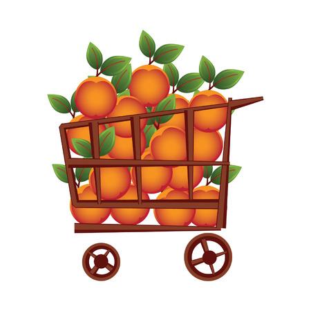 gift basket: Shopping basket Illustration