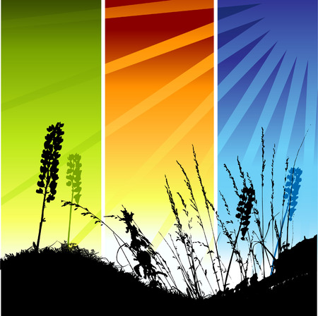Grass silhouette on meadow Stock Vector - 3581425