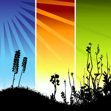 Grass silhouette on meadow Stock Vector - 3581417