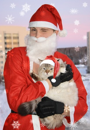 Santa with cat, christmas photo