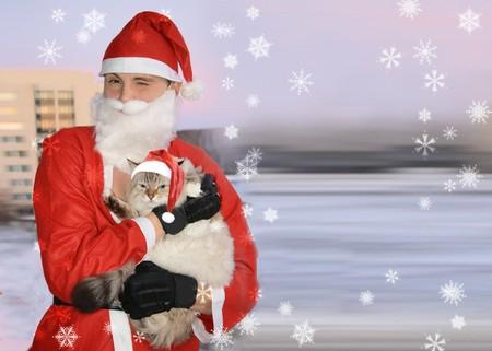 Santa with cat, christmas Stock Photo - 4050362
