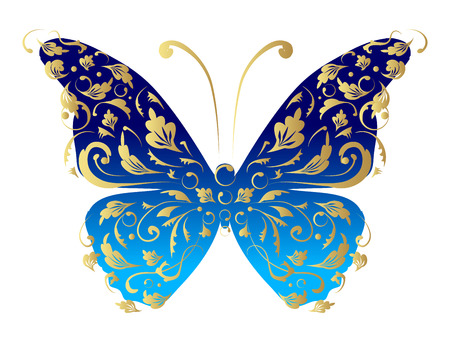 vector elements: Butterfly, ornate for your design Illustration