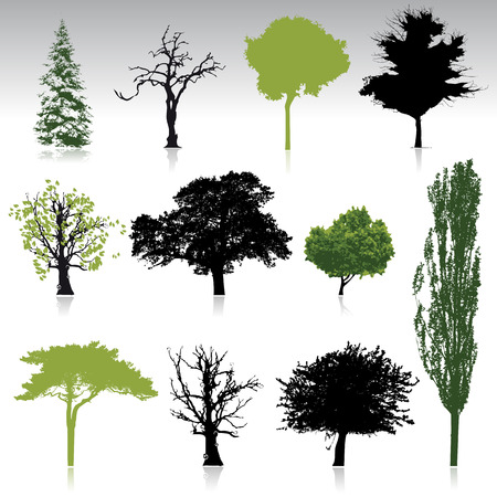 oaks: Tree silhouettes collection for your design