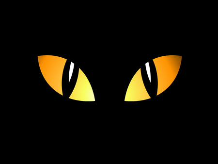 Eyes in the night Vector