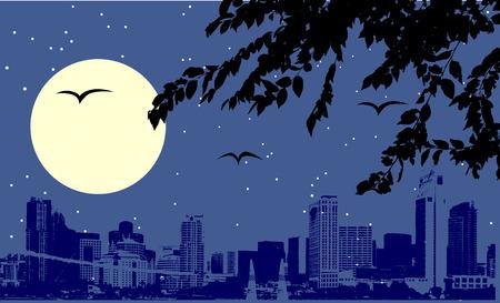 Night urban scene Vector