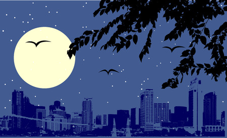 Night urban scene Vector