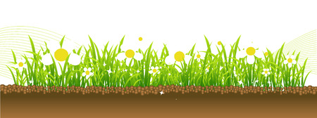 Spring, flowers on the meadow Vector
