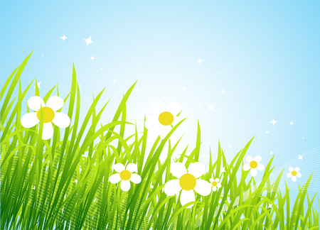Spring meadow beautiful Stock Vector - 4562258