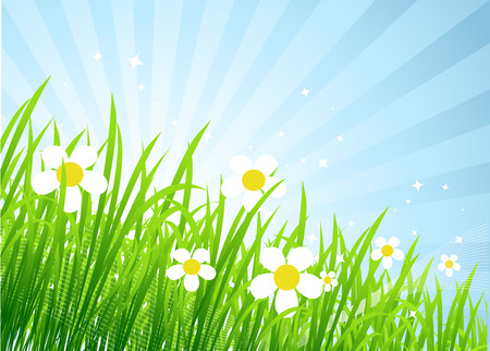 Spring meadow beautiful Stock Vector - 4562260