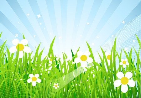 Spring meadow beautiful Stock Vector - 4562263