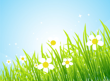 Spring meadow beautiful Stock Vector - 4562259