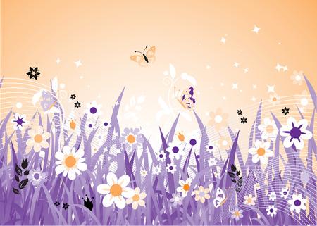 herbstblumen: Fr�hling sch�ne Wiese